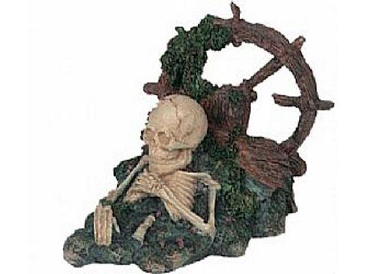 Σκελετός Με Tιμόνι.