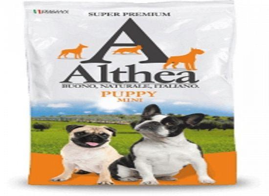 Althea Puppy – 15kg.