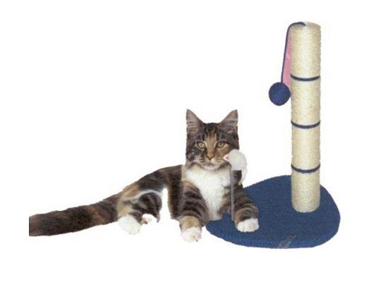 Cat Playing Ονυχοδρόμιο
