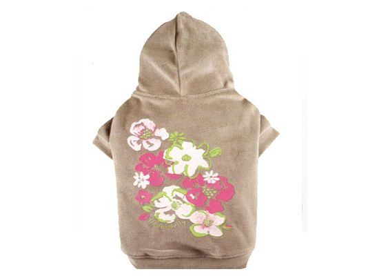 Doggy Dolly Jumper Flower Grey Hood