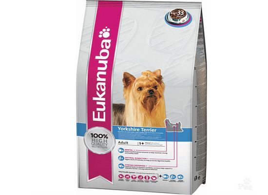 Eukanuba Adult Yorkshire Terrier