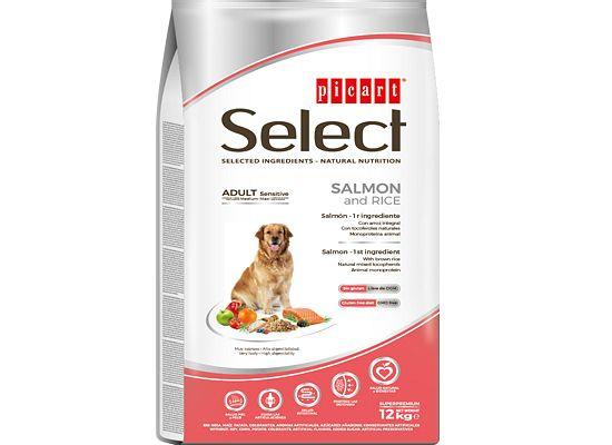 Picart Select Sensitive – Salmon & Rice.