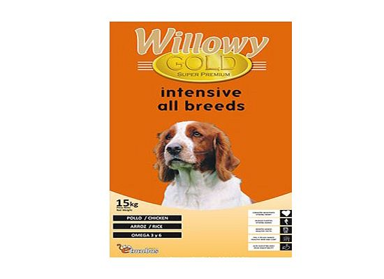 Willowy Intensive Energy